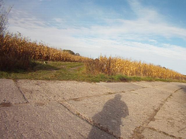H46 - zjazd z betonówki w kukurydzę